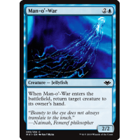 Man-o'-War Thumb Nail