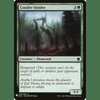 Conifer Strider Thumb Nail