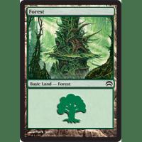 Forest E Thumb Nail