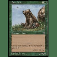 Bear Cub Thumb Nail