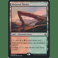 Sheltered Thicket Thumb Nail