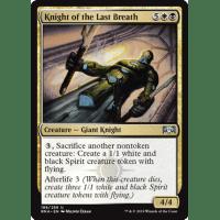Knight of the Last Breath Thumb Nail