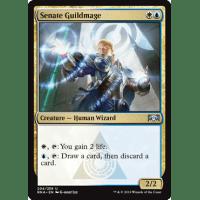Senate Guildmage Thumb Nail