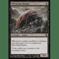 Mortician Beetle Thumb Nail