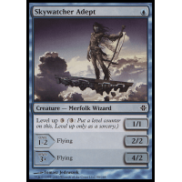 Skywatcher Adept Thumb Nail