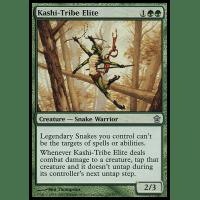 Kashi-Tribe Elite Thumb Nail