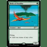 Birds of Paradise Thumb Nail