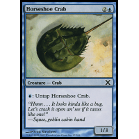 Horseshoe Crab Thumb Nail