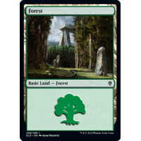 Forest Thumb Nail