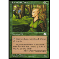 Llanowar Druid Thumb Nail