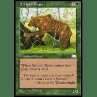 Striped Bears Thumb Nail
