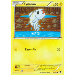 Tynamo - 31/101