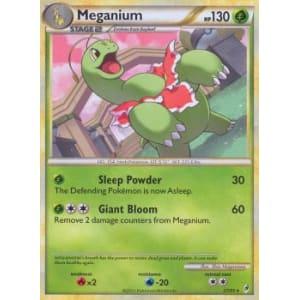 Meganium - 27/95