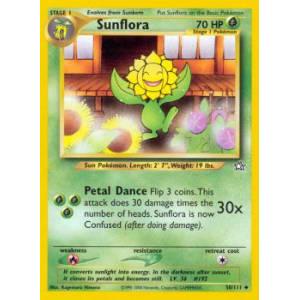 Sunflora - 50/111