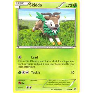Skiddo - 18/146