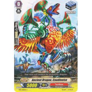 Ancient Dragon, Caudinoise