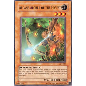 Arcane Archer of the Forest