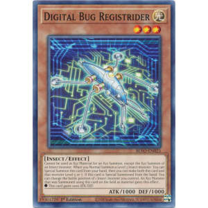 Digital Bug Registrider