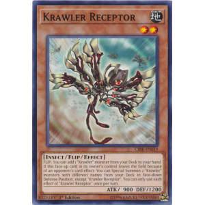 Krawler Receptor