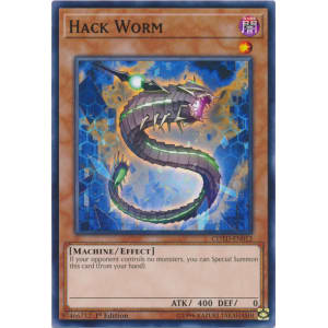 Hack Worm