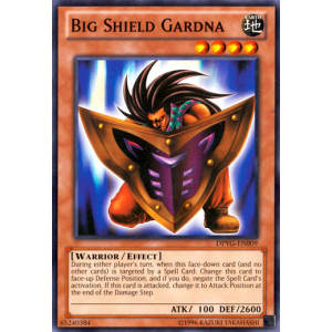Big Shield Gardna