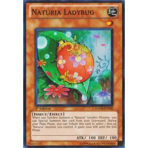 Naturia Ladybug