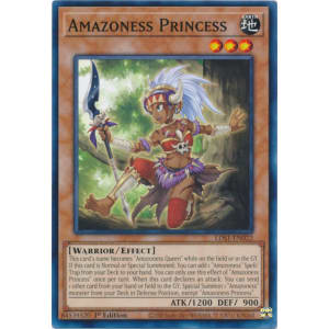Amazoness Princess