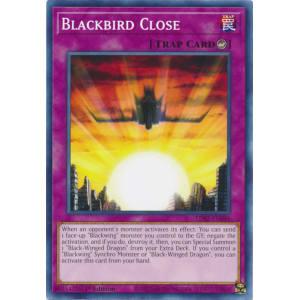 Blackbird Close
