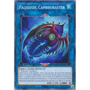 Paleozoic Cambroraster
