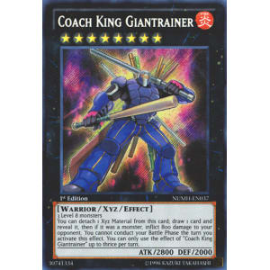 Coach King Giantrainer