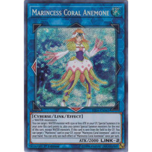 Marincess Coral Anemone