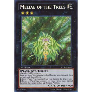 Meliae of the Trees