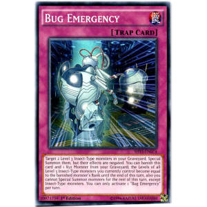 Bug Emergency
