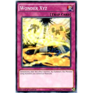 Wonder Xyz