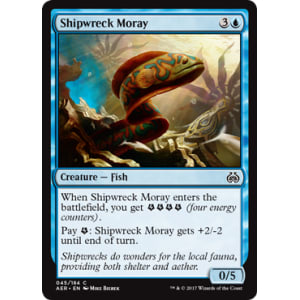 Shipwreck Moray