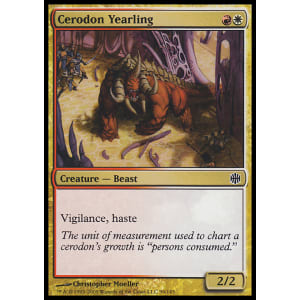 Cerodon Yearling