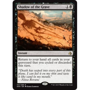 Shadow of the Grave