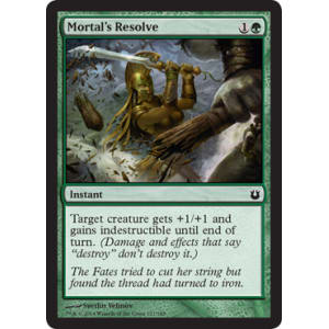 Mortal's Resolve
