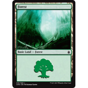 Forest K