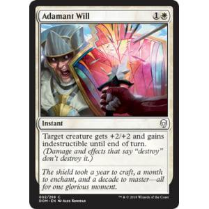 Adamant Will