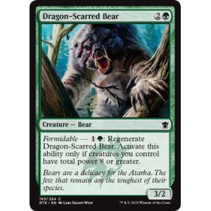 Dragon-Scarred Bear