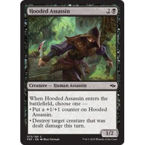 Hooded Assassin