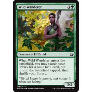 Wild Wanderer