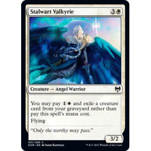 Stalwart Valkyrie