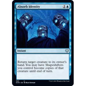 Absorb Identity