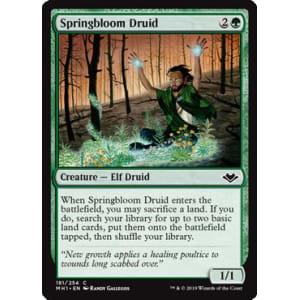 Springbloom Druid