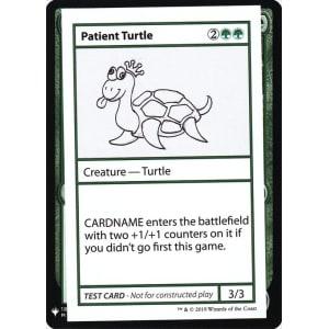 Patient Turtle