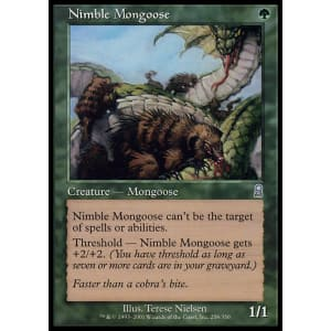Nimble Mongoose