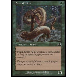 Marsh Boa