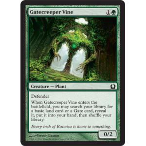 Gatecreeper Vine